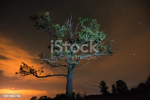 809971888istockphoto Silhouette of tree lit by flash light under the night sky with clouds and stars 1051662740
