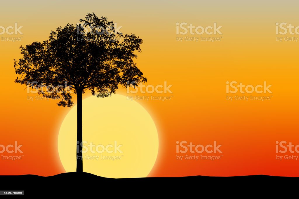 Silhouette of tree with sunset background stock photo