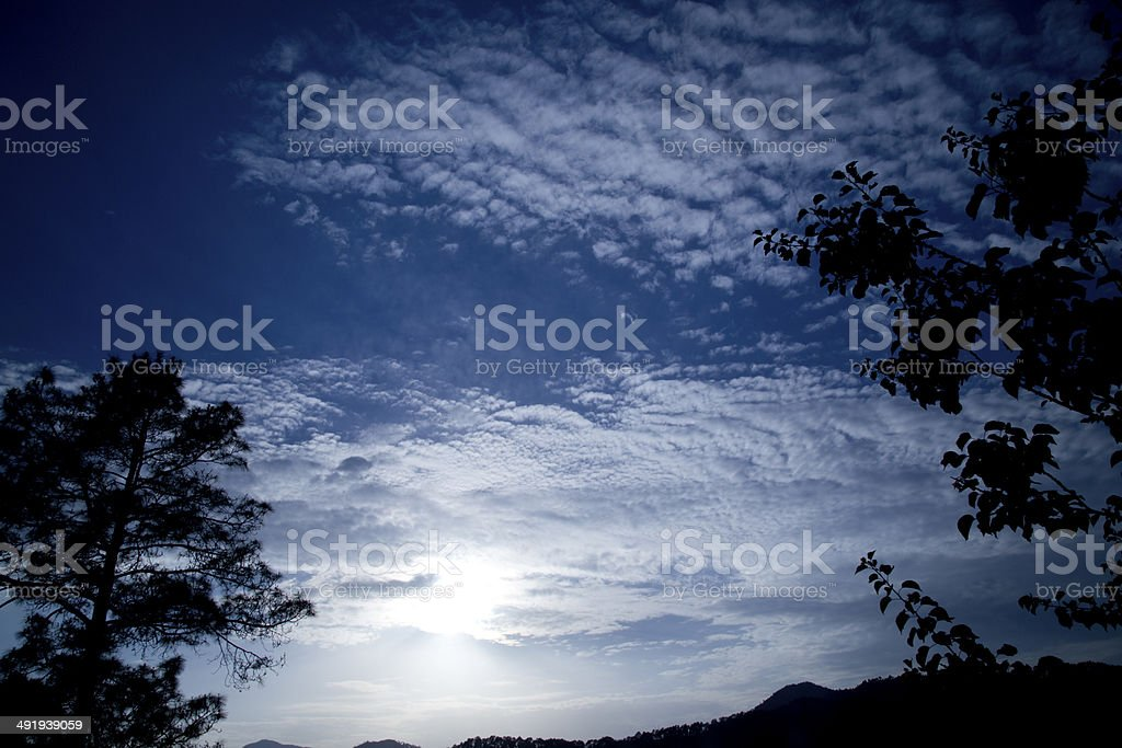 Silhouette of trees against cloudy sky royalty-free stock photo