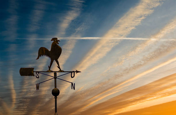 Silhouette of weather vane with decorative metallic rooster Weather vane is an old instrument widely used for estimating of wind direction weather vane stock pictures, royalty-free photos & images