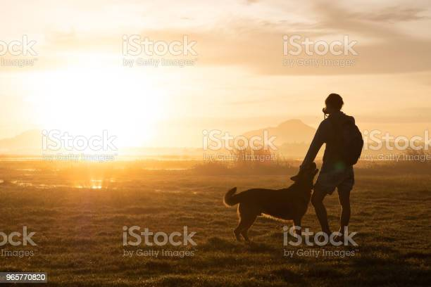 Silhouette of woman and dog walking on sunset background picture id965770820?b=1&k=6&m=965770820&s=612x612&h=pblergtyikg6yybpo0y49sen6psstsztae appfw3so=