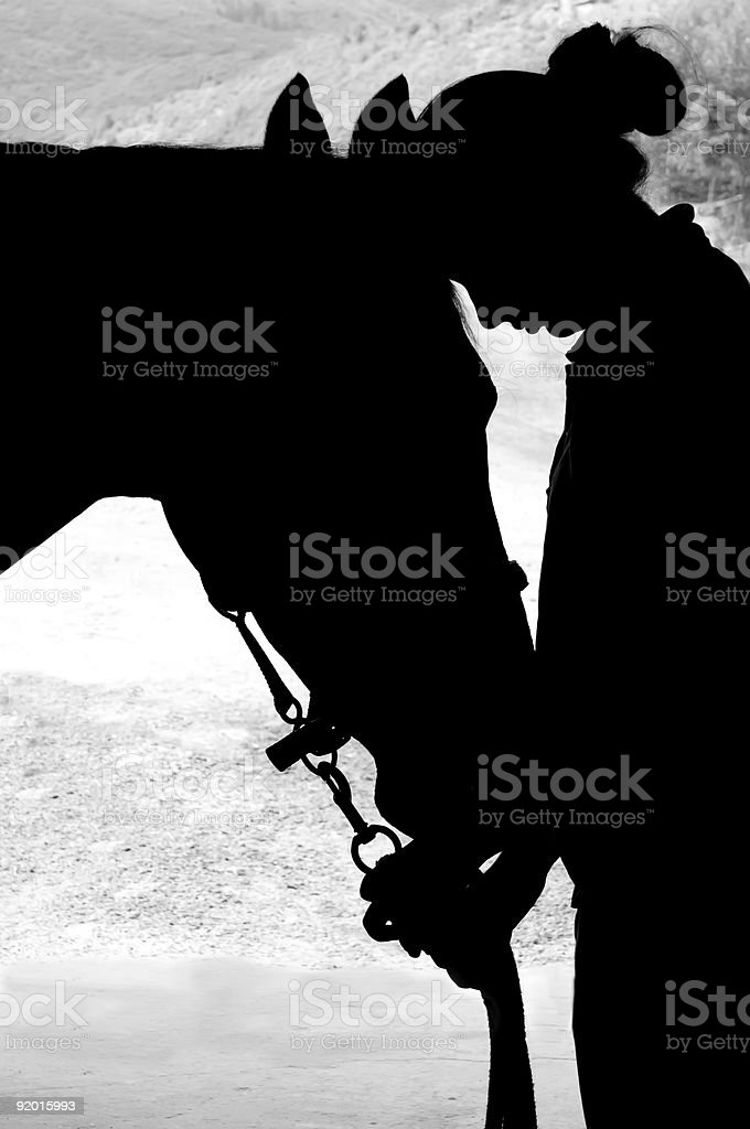Silhouette of woman and horse stock photo