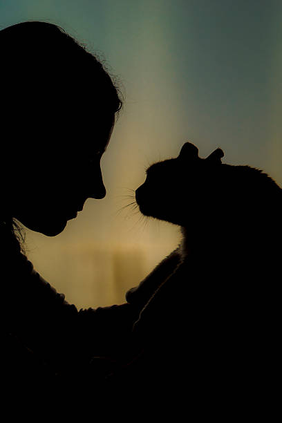 Silhouette of woman face with cat picture id534534187?b=1&k=6&m=534534187&s=612x612&w=0&h=qkebtlest6i tj5kexkzlgnrgkn2clf2wtfmmxwehq0=