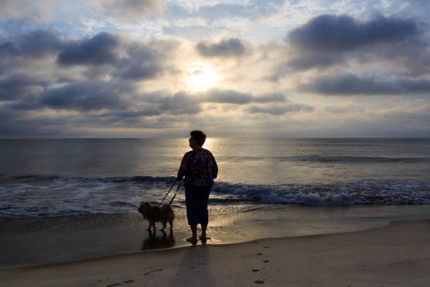Silhouette of woman on beach in early morning walking dog stock photo