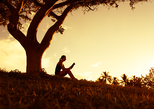 Sad Woman Sitting Under A Tree Stock Image - Image of book
