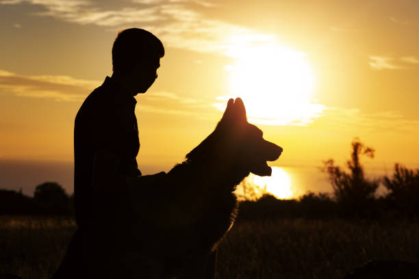Silhouette profile of german shepherd dog sitting nearby his omner picture id1076763258?b=1&k=6&m=1076763258&s=612x612&w=0&h=mlhez d5grvyg7bpr19whjurfdc exfpsxpk jdlfsu=
