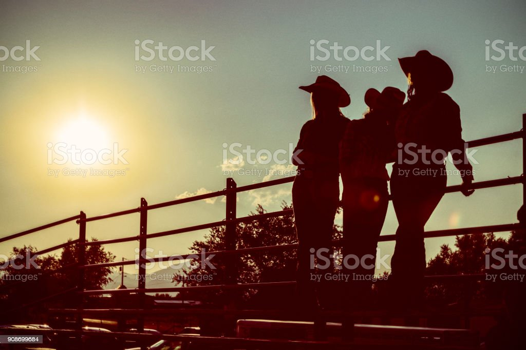Silhouette Rodeo Audience stock photo