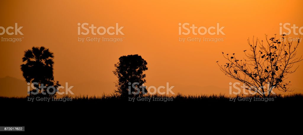 Silhouette sunset background stock photo