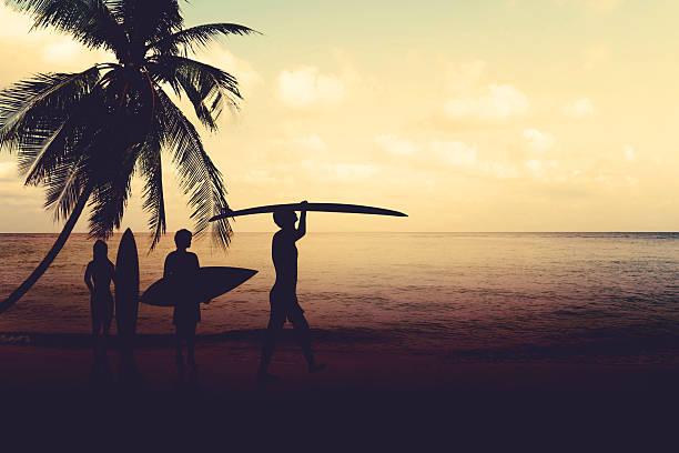 silhouette surfing on beach - サーフィン ストックフォトと画像