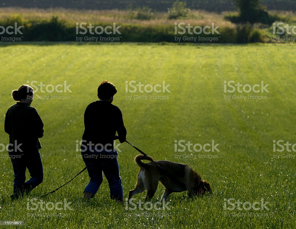 Silhouette Tracking royalty-free stock photo