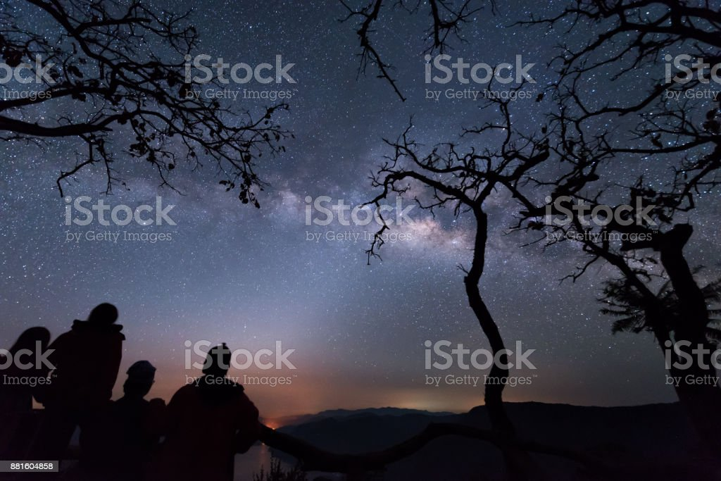 Silhouette tree against the milky way in a dark sky. stock photo