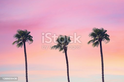 istock silhouette tropical palm tree with sun light on sunset sky. Copy space. Summer vacation and  travel concept. 1088658436