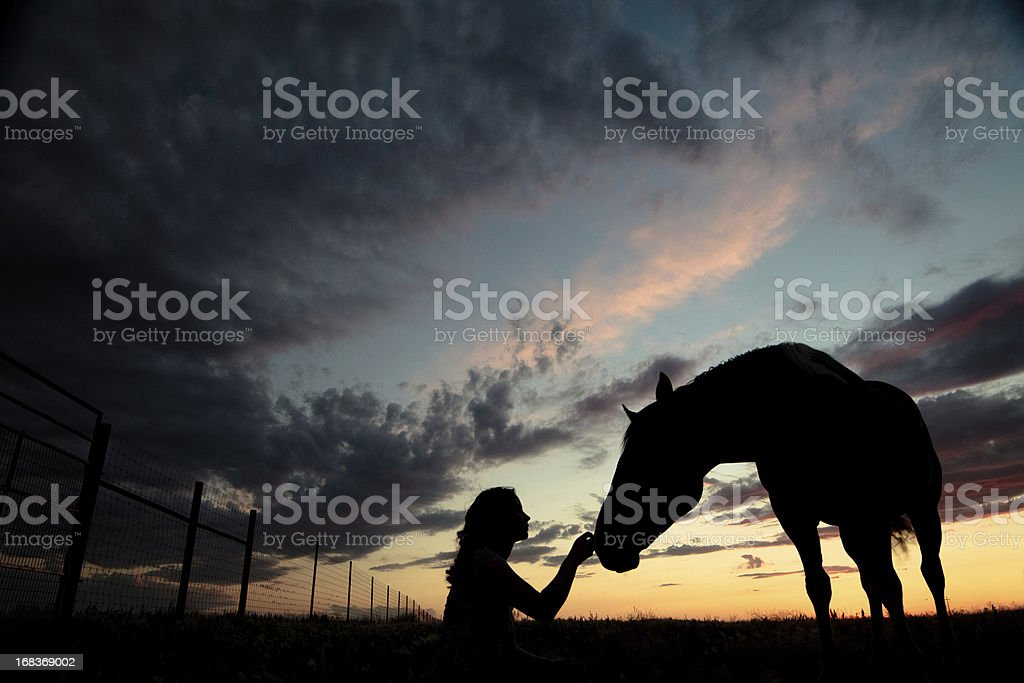 Silhouette Woman Petting Horse stock photo