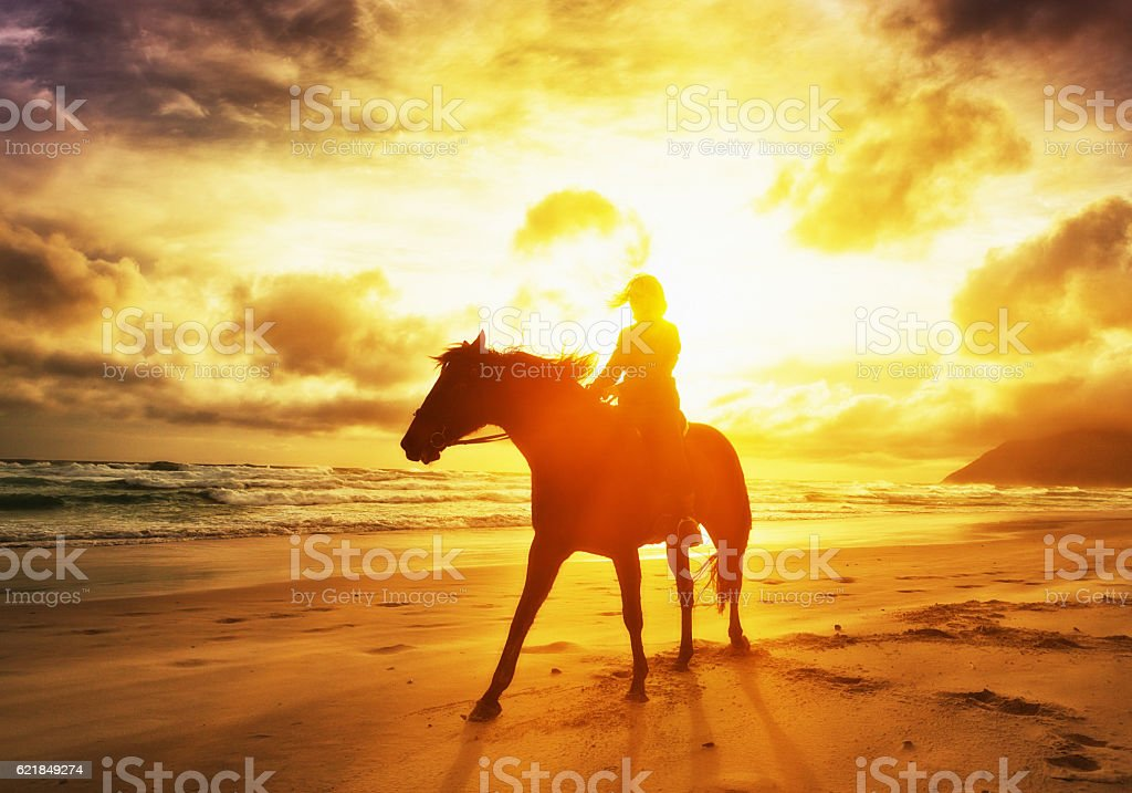 Silhouetted by dazzling golden sunset, woman rides horse along shoreline stock photo