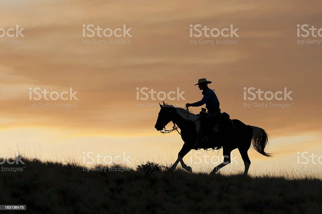 Silhouetted Cowboy rides before golden sunset stock photo