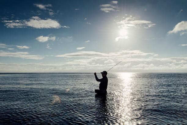 silhouette fliegenfischer angeln in der ostsee in dänemark - angeln dänemark stock-fotos und bilder