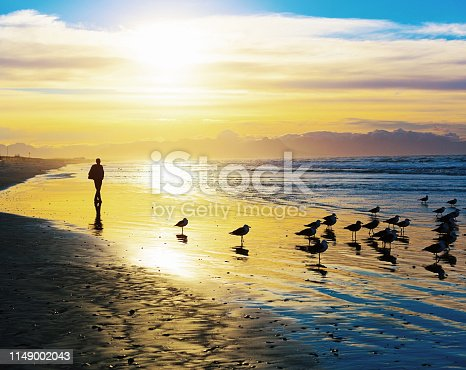 A silhouetted man walks on a deserted beach at sunset, his only companions a small flock of seabirds.