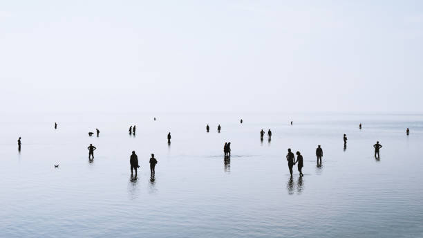 silhouetted people walking and swimming in shallow water large group of people or crowd standing walking and swimming in shallow water at German north sea coast during ebb tide, backlit silhouettes wading stock pictures, royalty-free photos & images