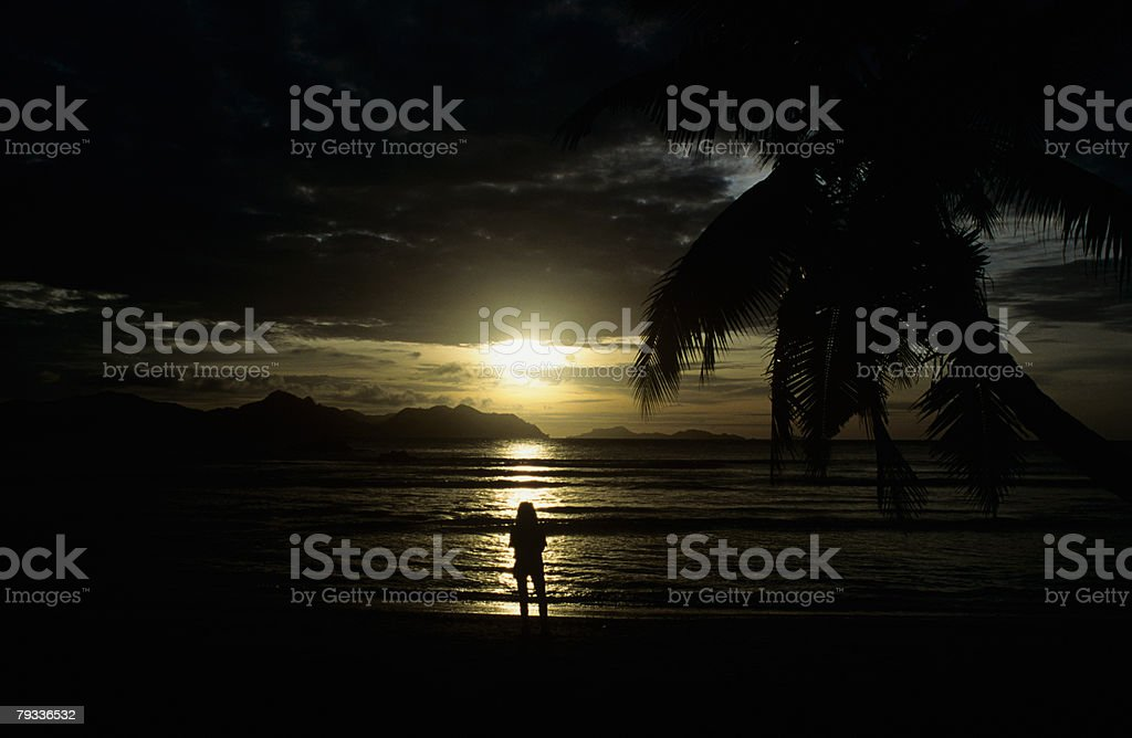 Silhouetted person on a beach at sunset 免版稅 stock photo