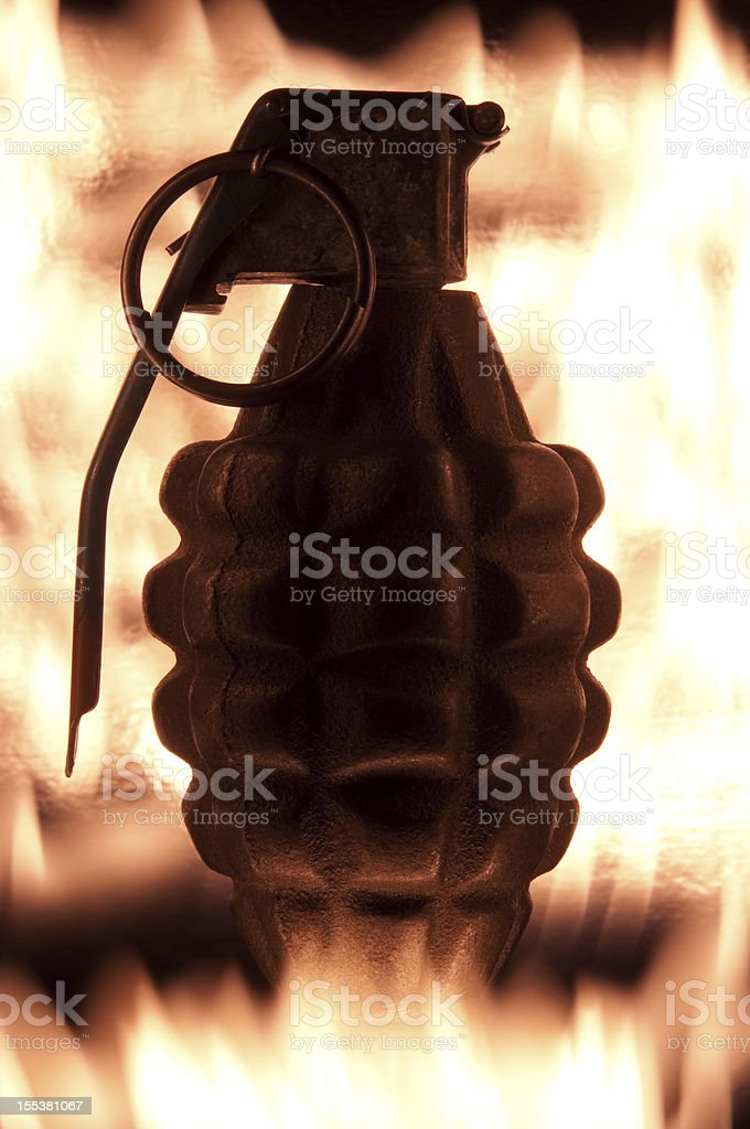 Silhouetted Pineapple Grenade royalty-free stock photo