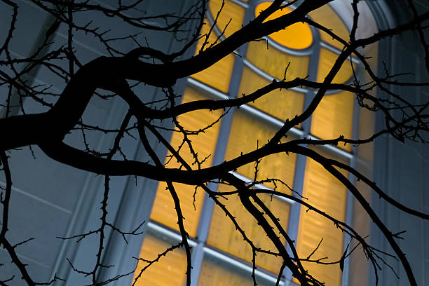 Silhouetted Tree Branches over LDS Stained Glass stock photo