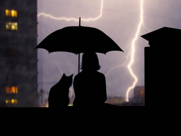 Silhouettes girl and cat under umbrella sitting on the roof high over picture id669885094?b=1&k=6&m=669885094&s=612x612&w=0&h=lwmzikjtwxzo2db2h3raagprmhusq   5r74nnl4btm=