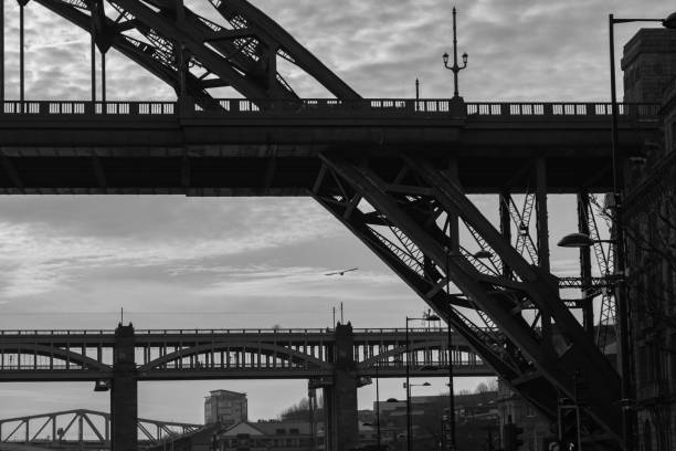 Silhouettes of a section of Tyne and High Level Bridges and a flying Sea Gull in Newcastle upon tyne, England stock photo