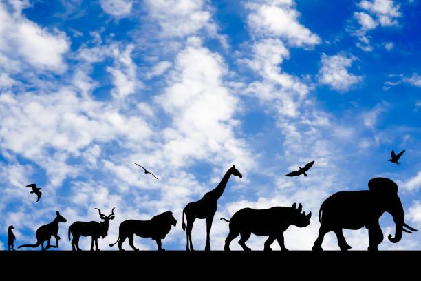 Silhouettes of animals on blue cloudy sky background picture id946155936?b=1&k=6&m=946155936&s=612x612&w=0&h=wjext wlgcvgxqdzg2kw7 snt5jlvf1btlxtkcrrack=