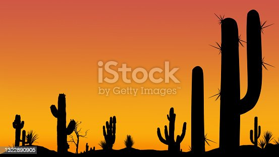 Silhouettes of different cacti at sunset with a cloudless sky in the desert. Desert sunset with clear sky without clouds with beautiful gradient.