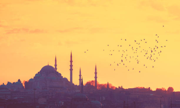 silhouettes of suleymaniye mosque on sunset. - turkey middle east stock pictures, royalty-free photos & images
