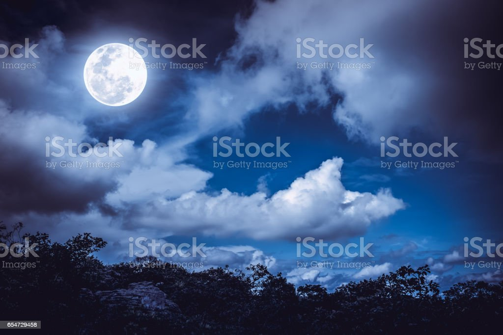 Silhouettes of tree and nighttime sky with clouds, full moon. stock photo