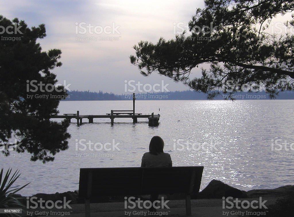 Silhouettes on the Lake royalty-free stock photo