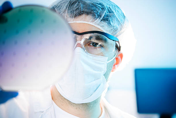 Silicon Wafer Lab worker examining a silicon wafer cleanroom stock pictures, royalty-free photos & images