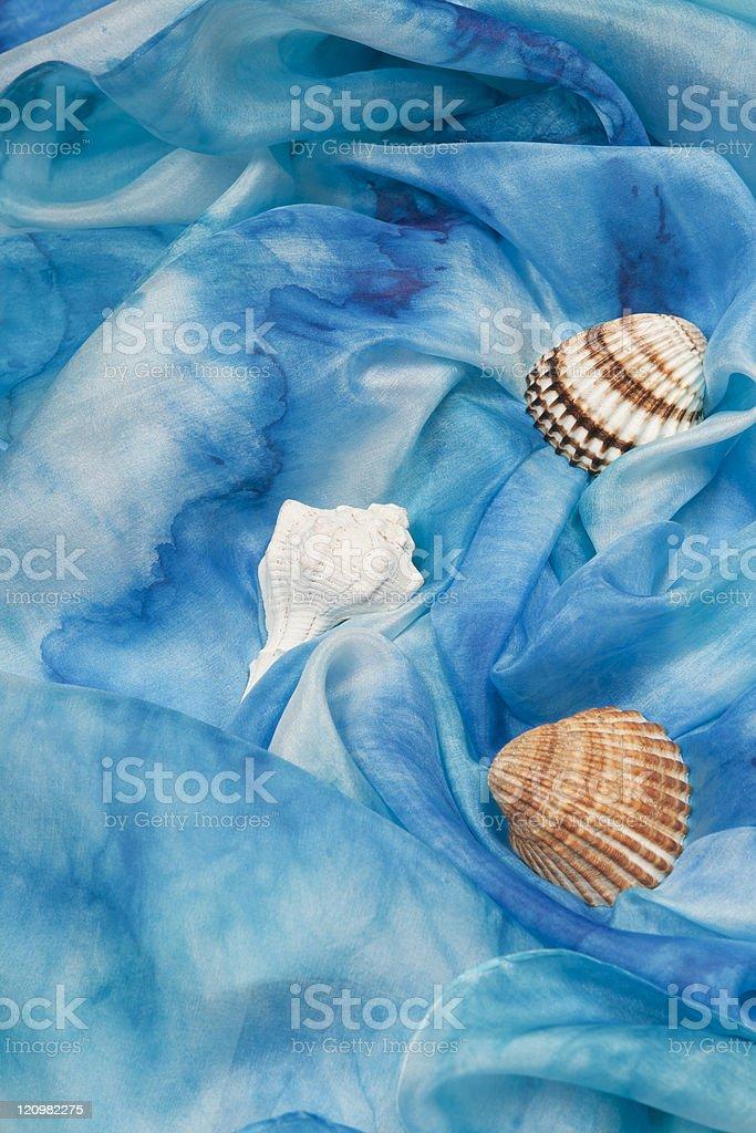 Silk background with seashells. stock photo