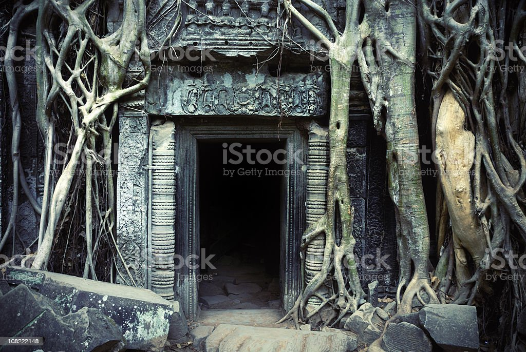 Silk cotton tree roots on Ta Prohm Temple, Angkor, Cambodia royalty-free stock photo