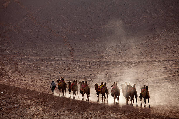 silk Road silk road in china silk road stock pictures, royalty-free photos & images