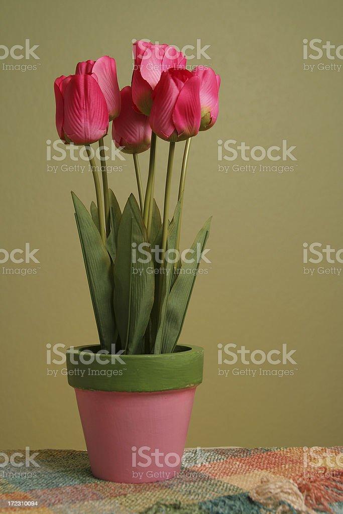 Silk Tulips royalty-free stock photo