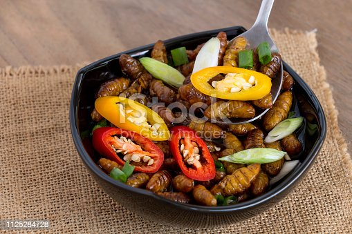 Silkworm Pupae (Bombyx Mori). Food insects for eating as food items made of cooked insect meat with seasoning in bowl and on spoon on sackcloth is good source of protein edible. Entomophagy concept.