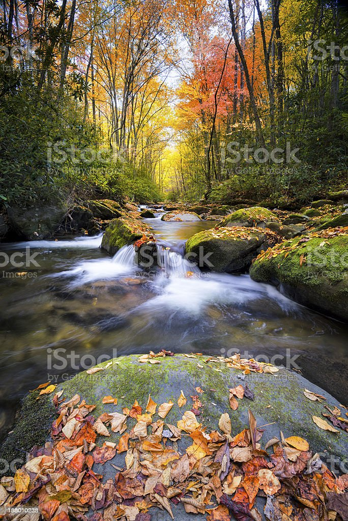 Silky Autumn Stream in the Smokies stock photo