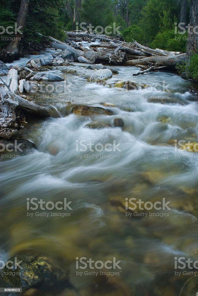 Silky Smooth Flowing Mountain Creek royalty-free stock photo