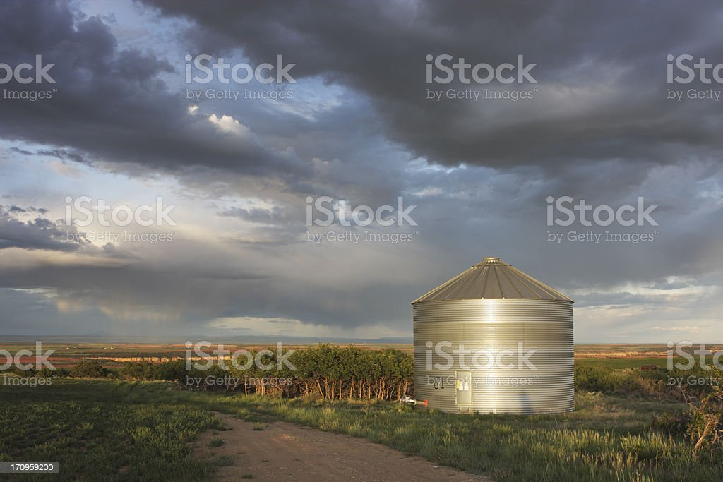 Silo Agriculture Farm Crop Building royalty-free stock photo