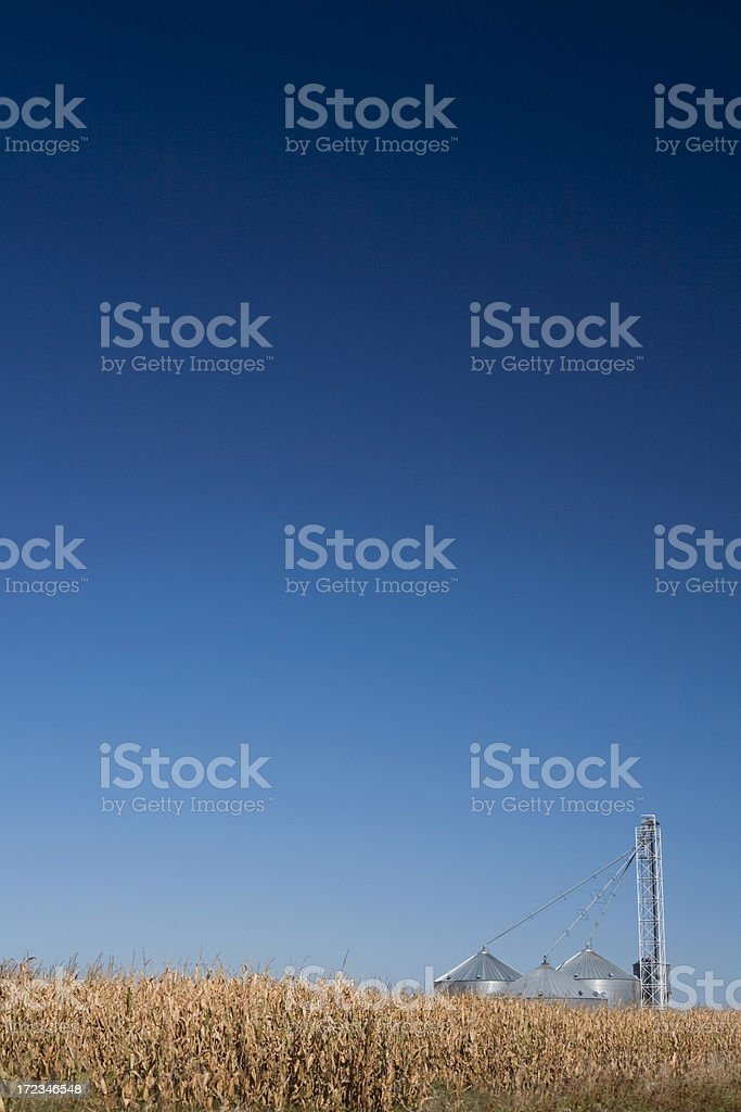 silo and corn royalty-free stock photo