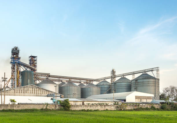 silo in food industry behind rice field stock photo
