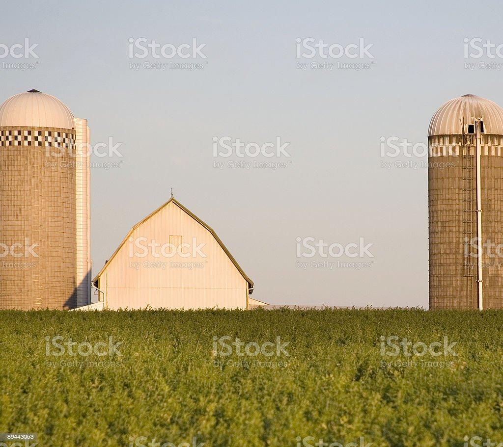 silo twins royalty-free stock photo