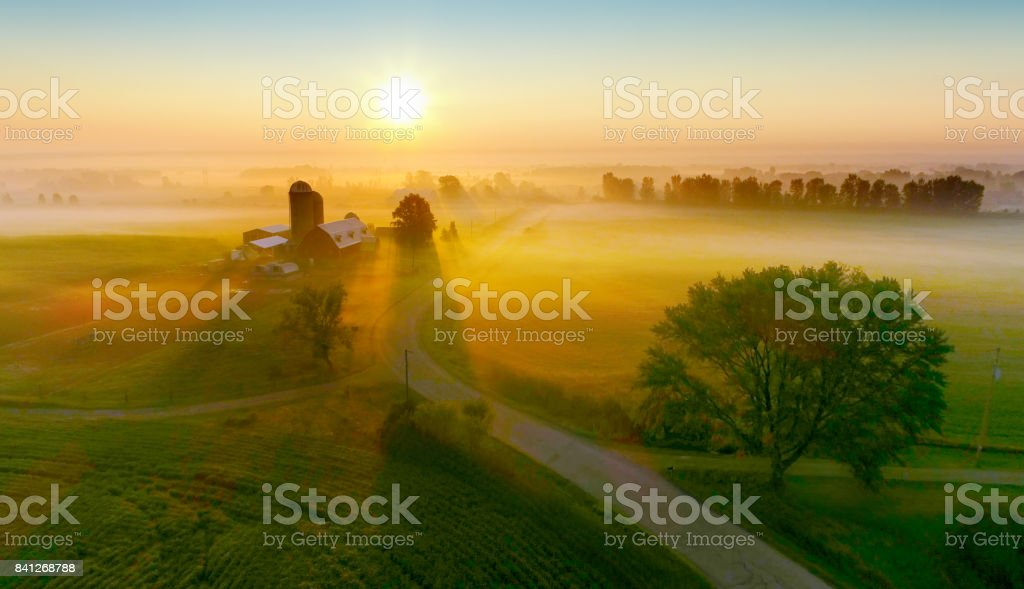 Silos and trees cast long shadows in fog at sunrise. stock photo