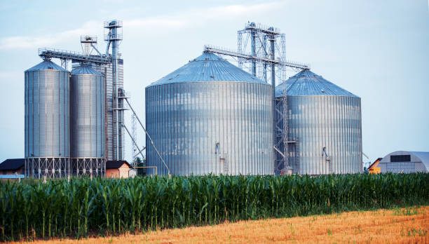 Silos for storing grain harvest. Concept of agriculture and industry stock photo