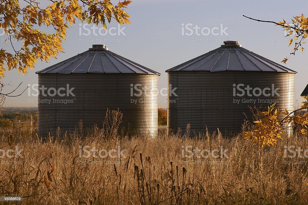 Silos in Fall stock photo