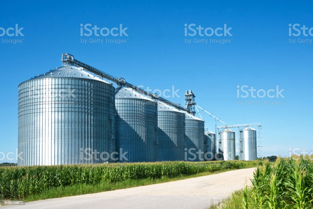 Silos in the Sun stock photo