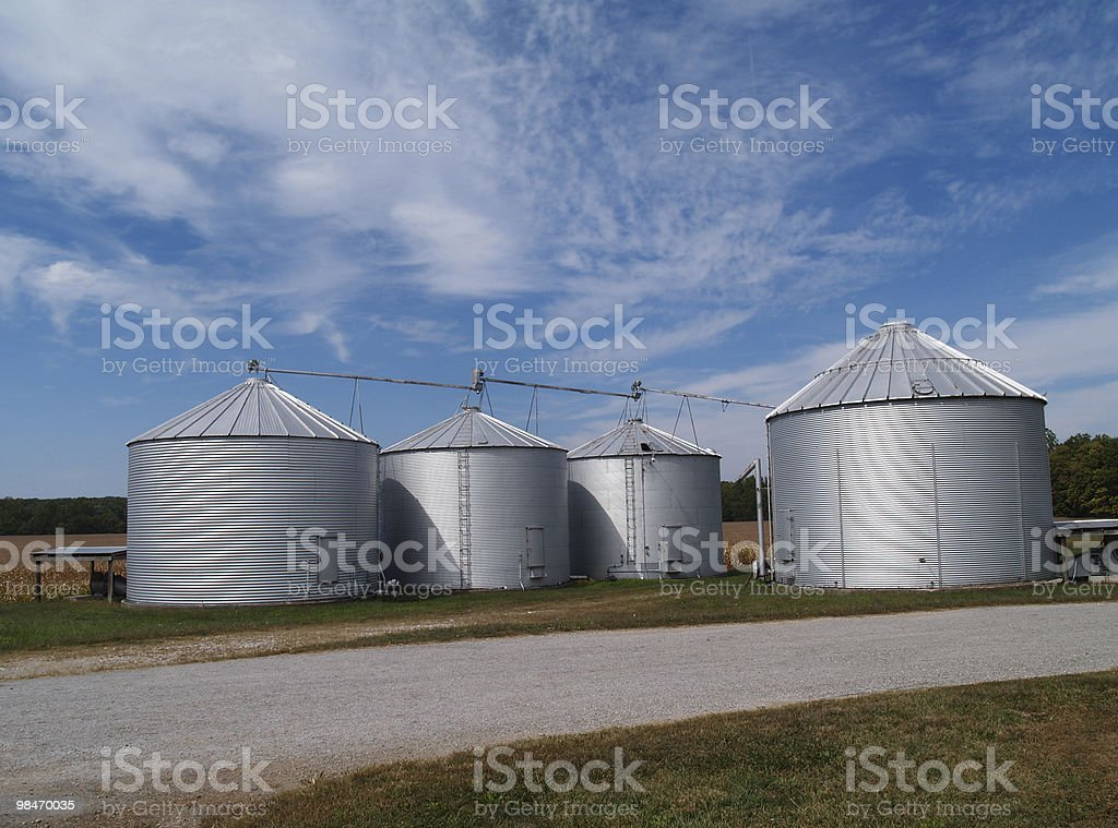 Silos Soybean Field and Copy Space royalty-free stock photo