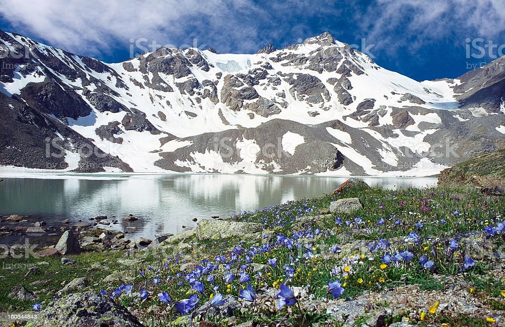 Siltran lake with flovering meadow stock photo